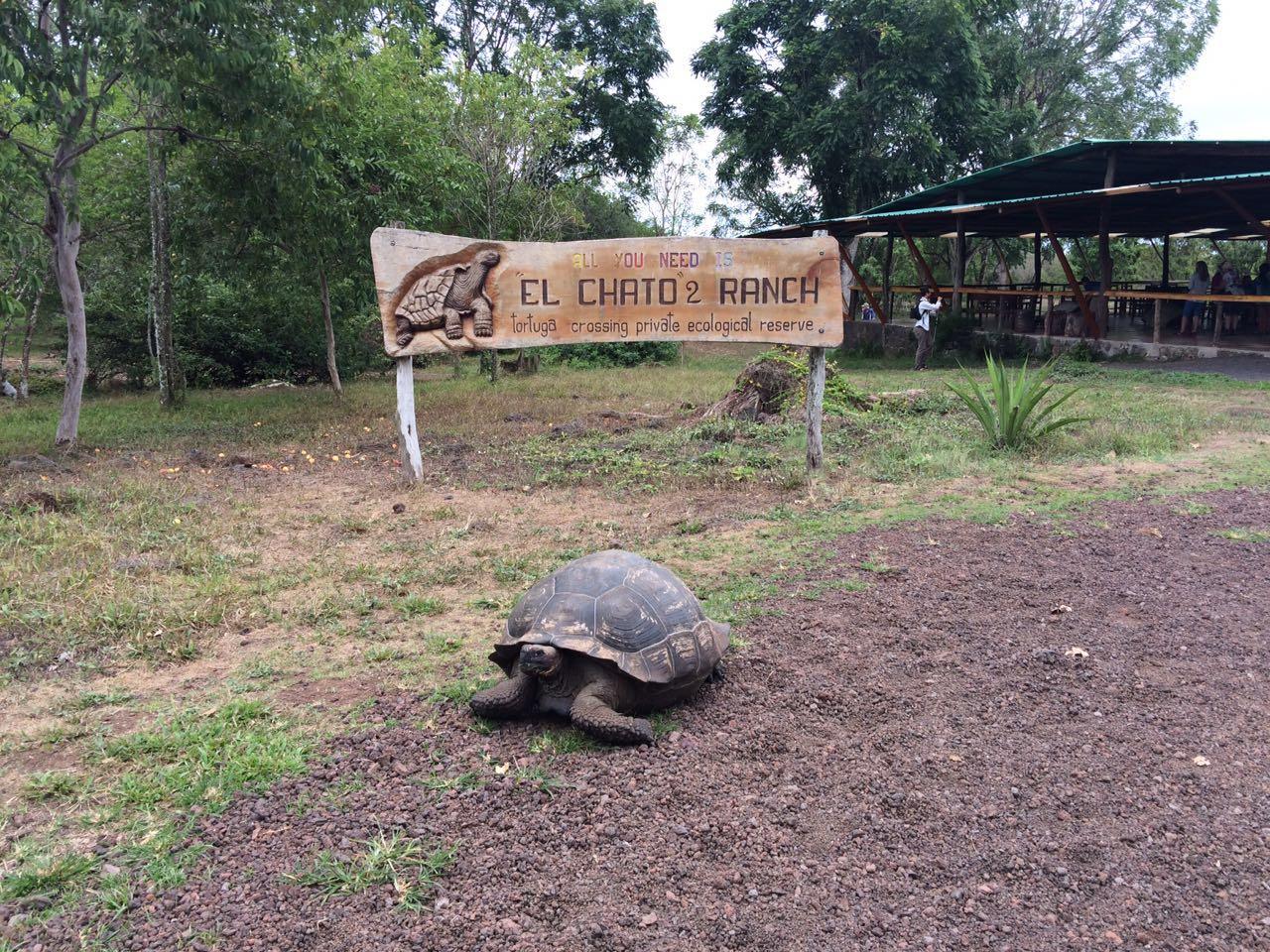 Encuentro de creacionismo en las Islas Galápagos 7