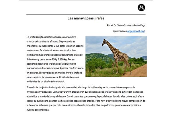 Las maravillosas jirafas - Creacionismo y Evolucionismo