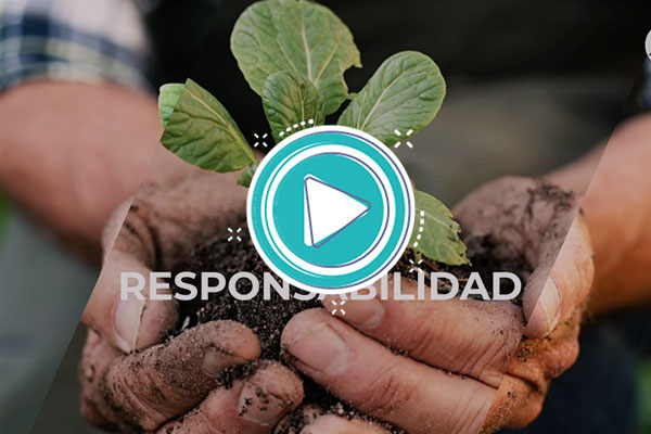 Video: Recursos naturales +5 Ciencias Sociales