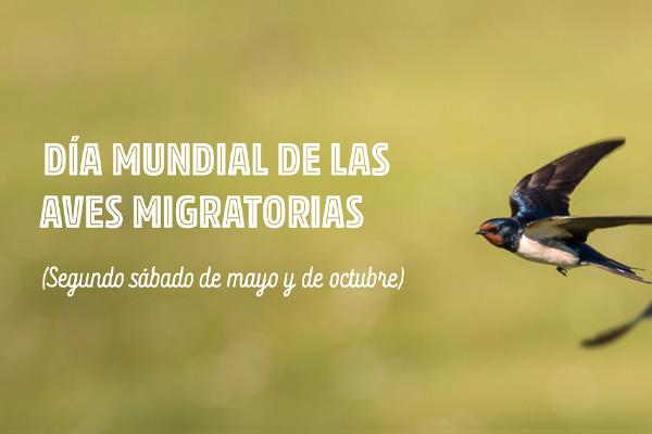 Proyecto pedagógico – Día Mundial de las Aves Migratorias