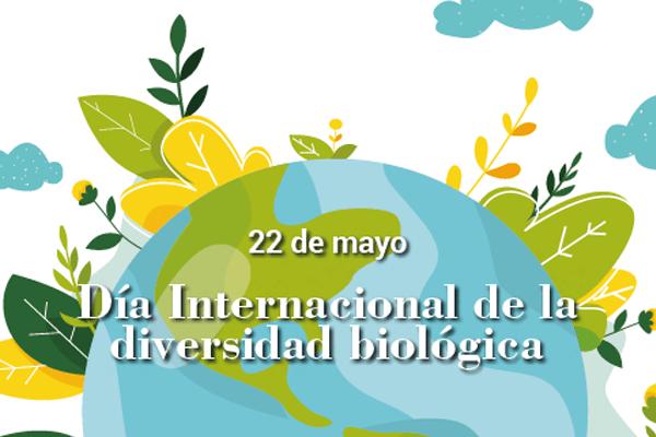 Proyecto pedagógico – Día Internacional de la Diversidad Biológica